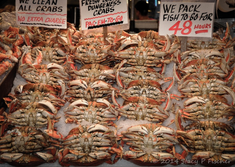 An artful display of fresh Dungeness crabs on ice.
