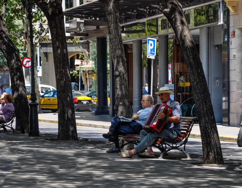 Under the shade of trees, two men sit on a bench, one playing an accordion, the other relaxing and listening.