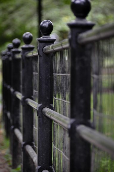 View of iron fence in New York City's Central Park