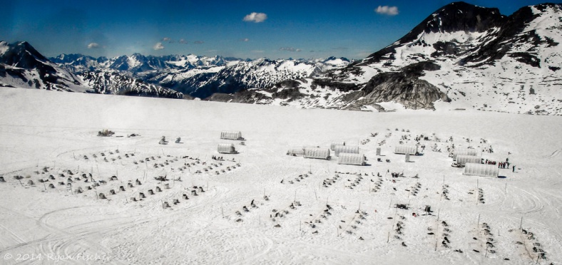 A view from the helicopter window of the musher's camp atop the Denver Glacier.