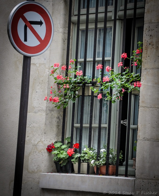 Red, white, and pink geraniums in flower boxes peak out between iron bars on wooden window.