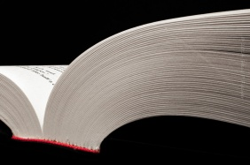 Close-up view of the pages of an opened book, looking from the bottom of the book laid flat.
