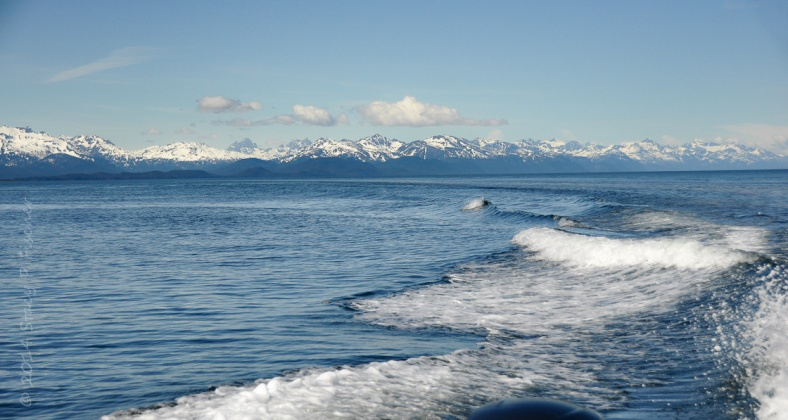 From the back of a boat, a view of the vast blue waters of Saginaw Channel, with Shelter Island and snow-capped Chilkat Mountains in the distance.