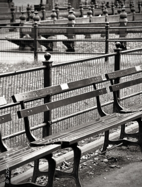 Benches, New York City Central Park