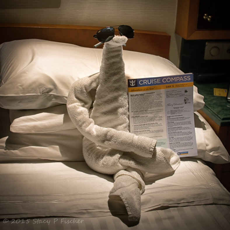 Towel animal on Royal Caribbean Cruise Line