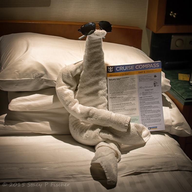 Towel animal on Royal Caribbean Cruise Line