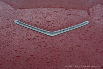 Red Thunderbird hood after rain, unretouched file