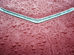 Red Thunderbird hood after rain
