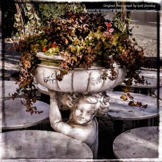 Nancy / dogear6, Living the Seasons