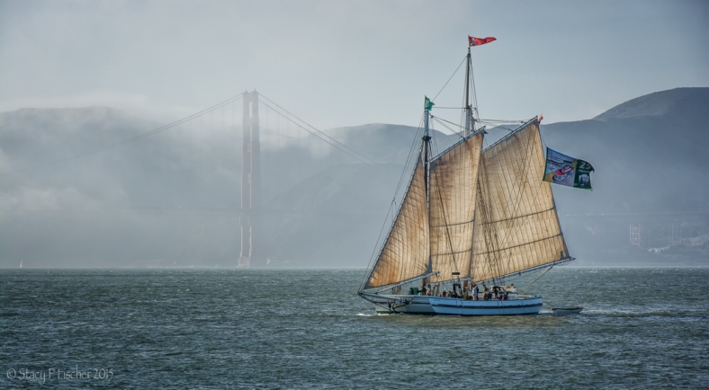 Golden Gate fog is backdrop to a pirate schooner