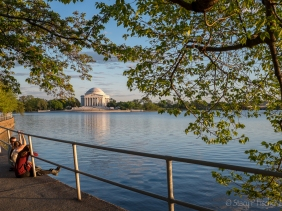 Jefferson Memorial from across the Tidal Basin, golden hour