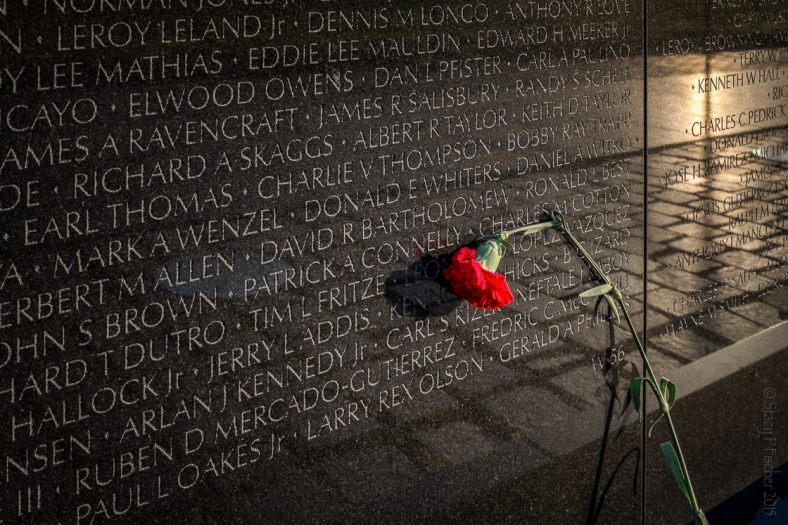 Vietnam Veterans Memorial and a red carnation left in remembrance