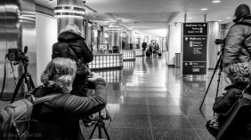 National Airport Photo Safari