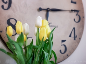 yellow and white tulips against background of clock